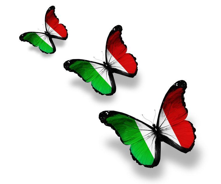 inwoner aantal italie